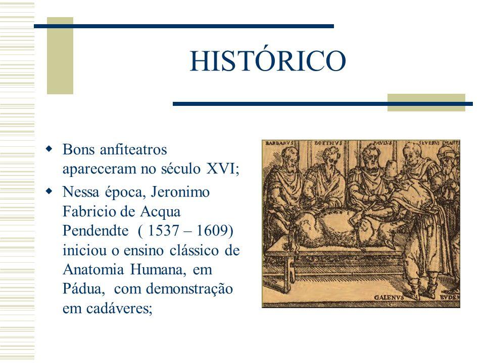 HISTÓRICO Bons anfiteatros apareceram no século XVI; Nessa época, Jeronimo Fabricio de Acqua Pendendte ( 1537 – 1609) iniciou o ensino clássico de Ana