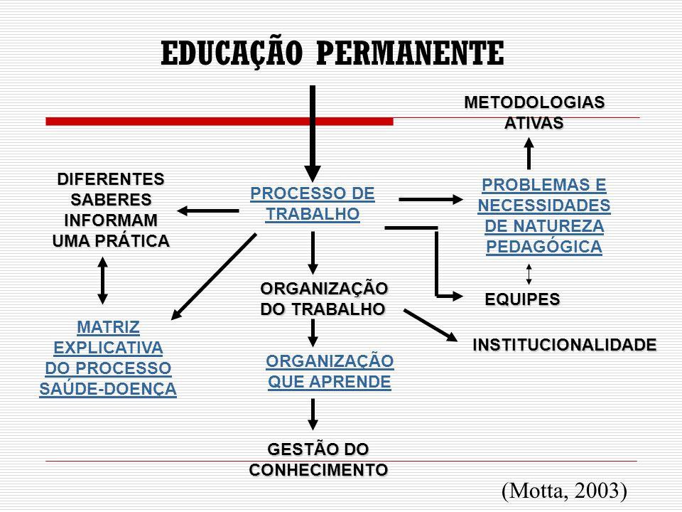 EQUIPES INSTITUCIONALIDADE DIFERENTES SABERES INFORMAM UMA PRÁTICA MATRIZ EXPLICATIVA DO PROCESSO SAÚDE-DOENÇA EDUCAÇÃO PERMANENTE PROCESSO DE TRABALH