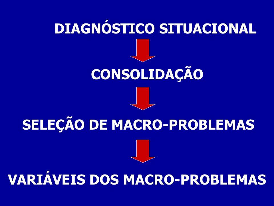 CONSOLIDAÇÃO SELEÇÃO DE MACRO-PROBLEMAS VARIÁVEIS DOS MACRO-PROBLEMAS DIAGNÓSTICO SITUACIONAL