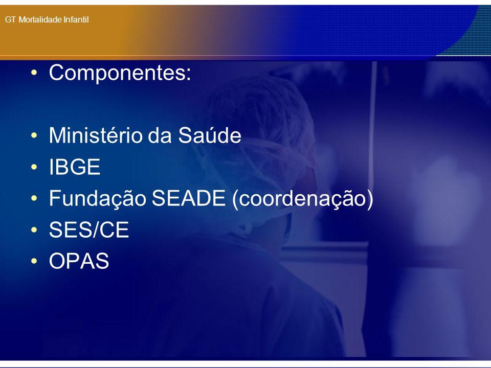 GT Mortalidade Infantil Componentes: Ministério da Saúde IBGE Fundação SEADE (coordenação) SES/CE OPAS