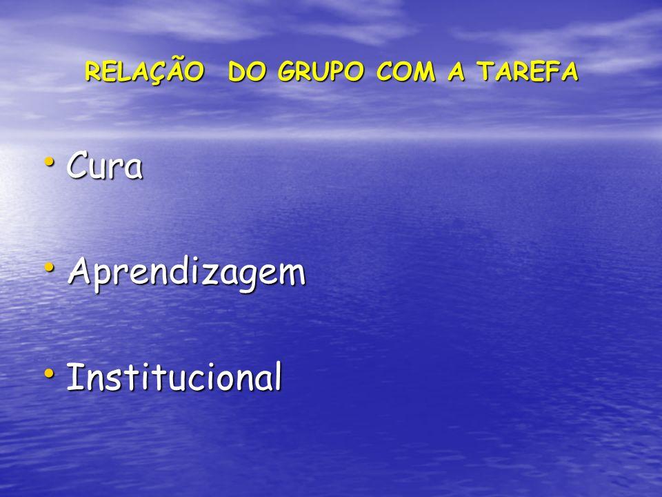 RELAÇÃO DO GRUPO COM A TAREFA RELAÇÃO DO GRUPO COM A TAREFA Cura Cura Aprendizagem Aprendizagem Institucional Institucional