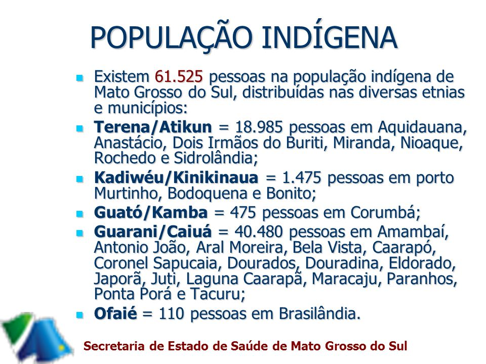 POPULAÇÃO INDÍGENA Existem 61.525 pessoas na população indígena de Mato Grosso do Sul, distribuídas nas diversas etnias e municípios: Existem 61.525 p