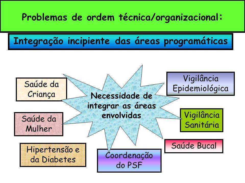 Integração incipiente das áreas programáticas Saúde da Criança Hipertensão e da Diabetes Saúde da Mulher Vigilância Epidemiológica Coordenação do PSF