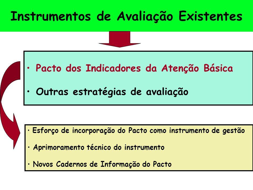 Instrumentos de Avaliação Existentes Pacto dos Indicadores da Atenção Básica Outras estratégias de avaliação Esforço de incorporação do Pacto como instrumento de gestão Aprimoramento técnico do instrumento Novos Cadernos de Informação do Pacto