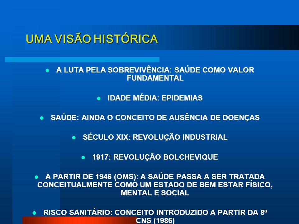 A VIGILÂNCIA SANITÁRIA NO CONTEXTO DO SUS A construção do Sistema Estadual de Vigilância Sanitária Diretoria de Vigilância Sanitária/ SES-SC Raquel Ri
