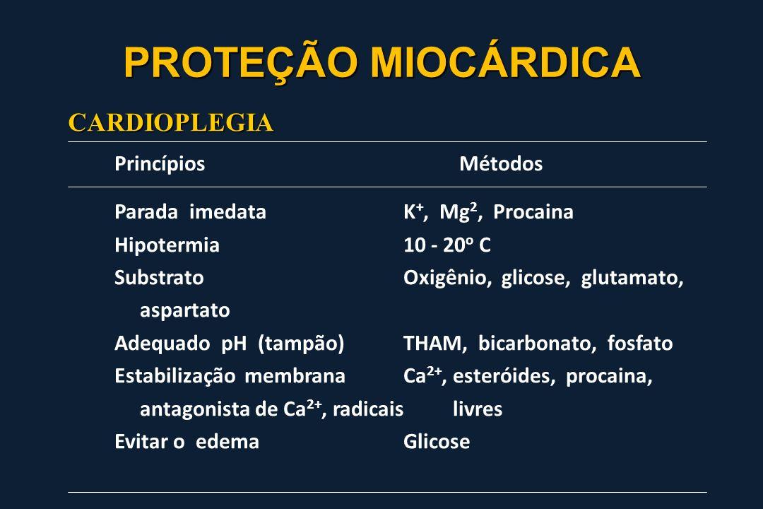 Princípios Métodos Parada imedataK +, Mg 2, Procaina Hipotermia10 - 20 o C SubstratoOxigênio, glicose, glutamato, aspartato Adequado pH (tampão)THAM,
