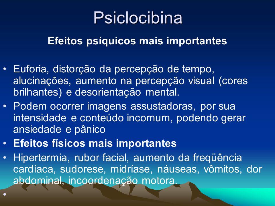 Psiclocibina Efeitos psíquicos mais importantes Euforia, distorção da percepção de tempo, alucinações, aumento na percepção visual (cores brilhantes)