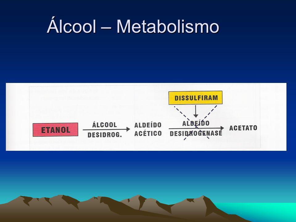 Álcool – Metabolismo