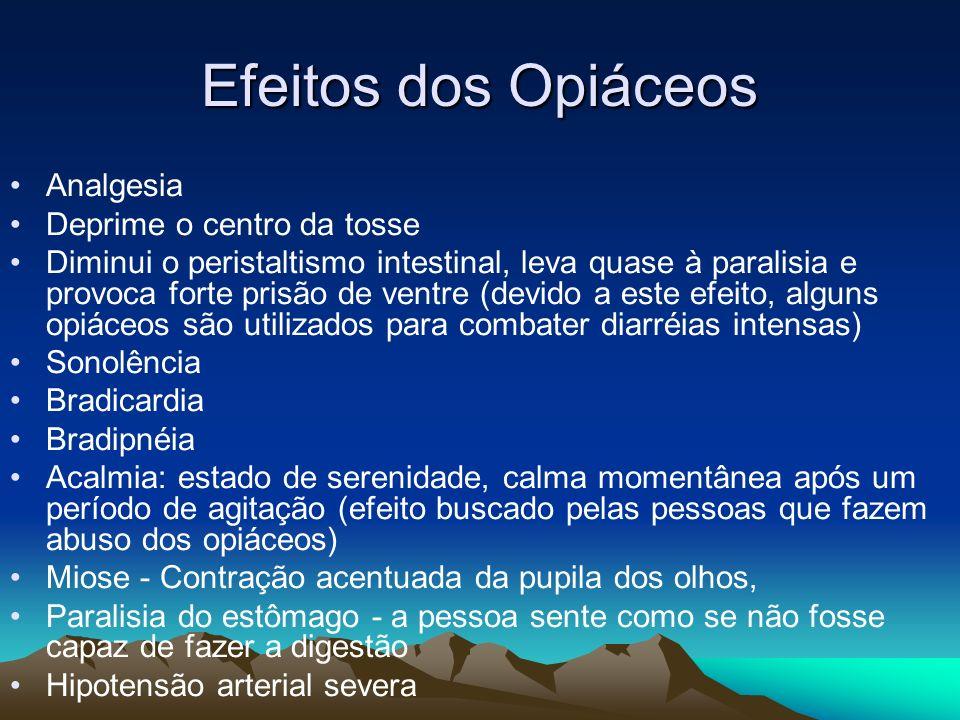 Efeitos dos Opiáceos Analgesia Deprime o centro da tosse Diminui o peristaltismo intestinal, leva quase à paralisia e provoca forte prisão de ventre (