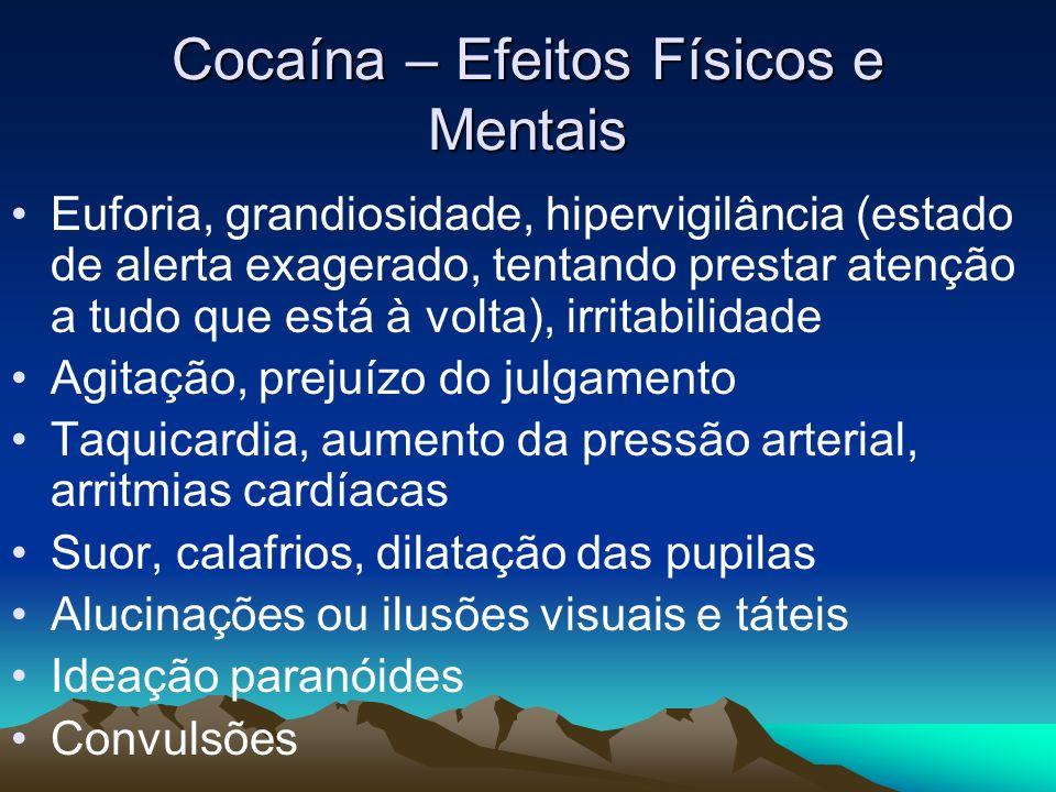 Cocaína – Efeitos Físicos e Mentais Euforia, grandiosidade, hipervigilância (estado de alerta exagerado, tentando prestar atenção a tudo que está à vo