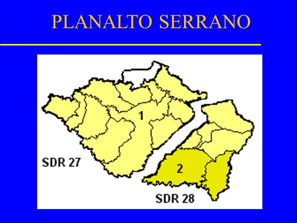 Barra Vellha sai de(24)entra em(23) Campo Alegre sai de(23)entra em(25) Rio Negrinho sai de(23)entra em(25) São Bento do Sul sai de(23)entra em(25) Sã