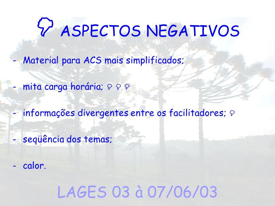 ASPECTOS NEGATIVOS -Material para ACS mais simplificados; -mita carga horária; -informações divergentes entre os facilitadores; -seqüência dos temas;