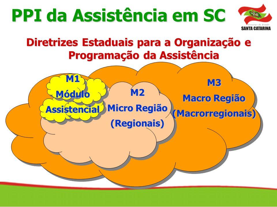 M2 Micro Região (Regionais) M3 Macro Região (Macrorregionais) M1MóduloAssistencial PPI da Assistência em SC Diretrizes Estaduais para a Organização e