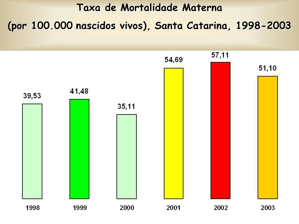 Indicadores Saúde da Mulher 2003 AlcançadoMeta % alcance da Meta Taxa de mortalidade materna51,130,058,7 % de nascidos vivos 4 ou + consultasde pré-na