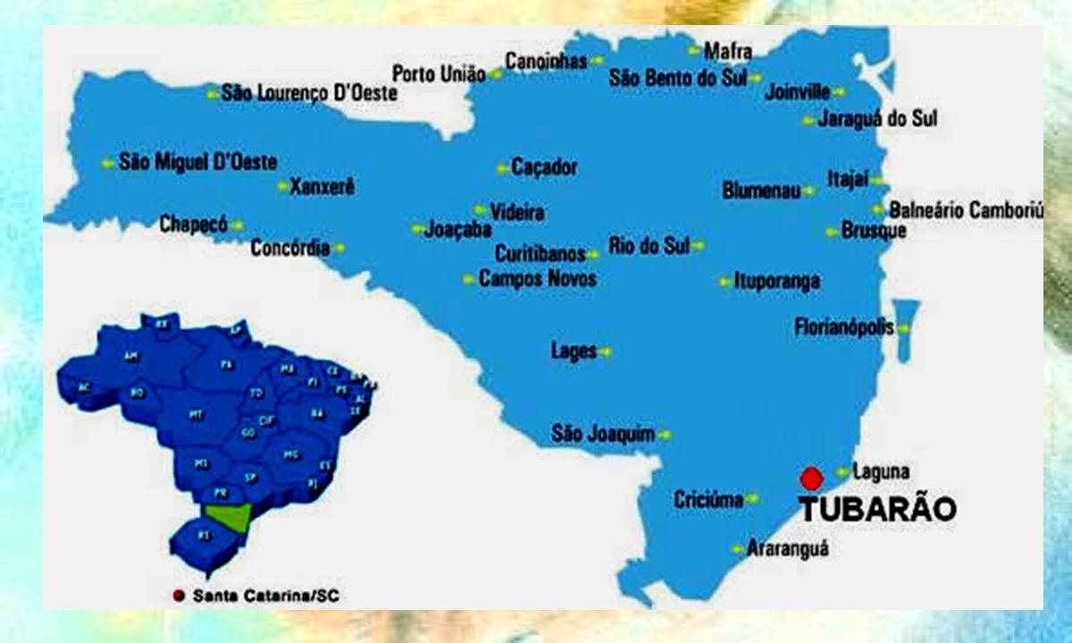 - Tubarão 97.000 habitantes 23 ESF (19 ESB) 1 CEO tipo II 38 CDs na rede 1 Universidade (Unisul) 1 Curso THD (Qualificar) www.tubarao.sc.gov.br