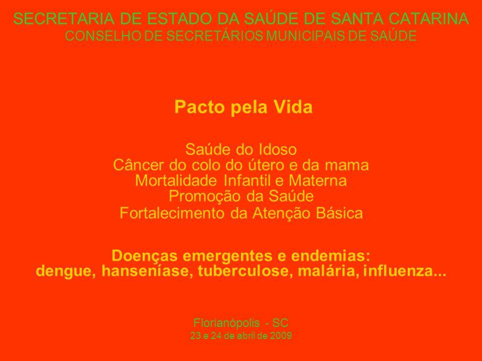 SECRETARIA DE ESTADO DA SAÚDE DE SANTA CATARINA CONSELHO DE SECRETÁRIOS MUNICIPAIS DE SAÚDE Pacto pela Vida Saúde do Idoso Câncer do colo do útero e da mama Mortalidade Infantil e Materna Promoção da Saúde Fortalecimento da Atenção Básica Doenças emergentes e endemias: dengue, hanseníase, tuberculose, malária, influenza...