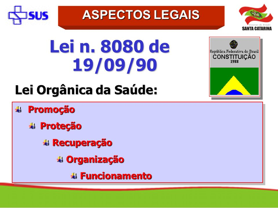 Promoção Promoção Proteção Proteção Recuperação Recuperação Organização Organização Funcionamento Funcionamento Promoção Promoção Proteção Proteção Re