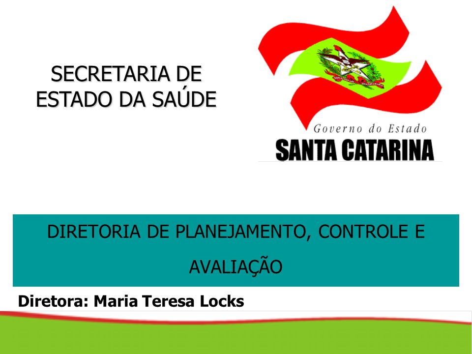 SECRETARIA DE ESTADO DA SAÚDE DIRETORIA DE PLANEJAMENTO, CONTROLE E AVALIAÇÃO Diretora: Maria Teresa Locks