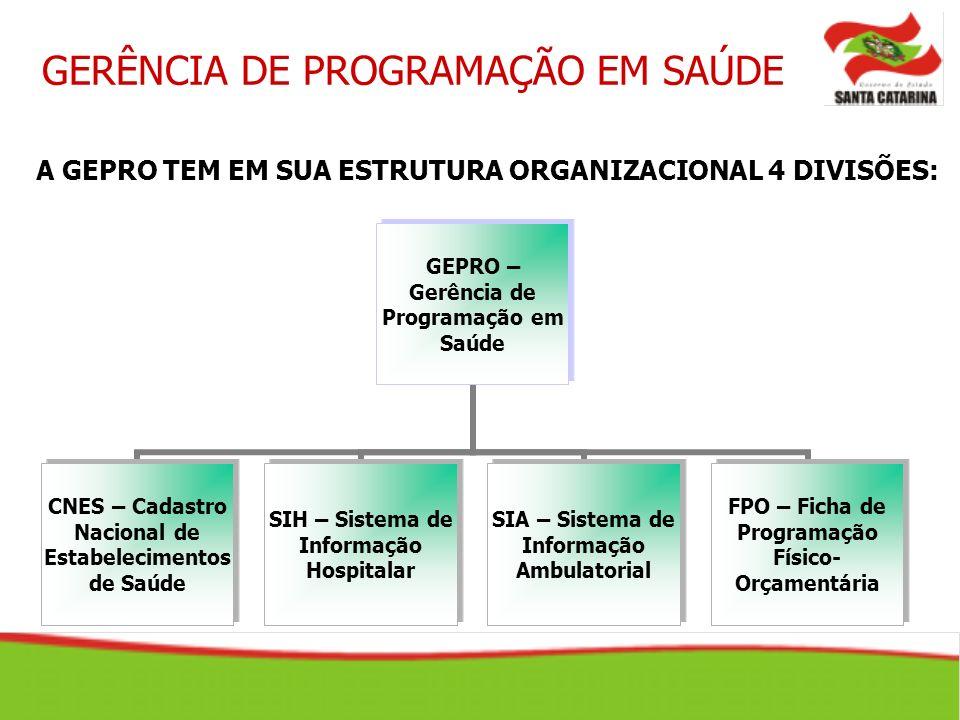 GERÊNCIA DE PROGRAMAÇÃO EM SAÚDE CNES – Cadastro Nacional de Estabelecimentos de Saúde FÓRUM http://forum.datasus.gov.br - CNES