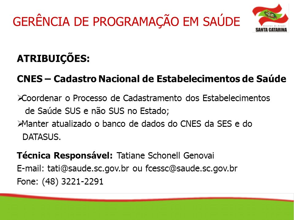 ATRIBUIÇÕES: CNES – Cadastro Nacional de Estabelecimentos de Saúde Coordenar o Processo de Cadastramento dos Estabelecimentos de Saúde SUS e não SUS n