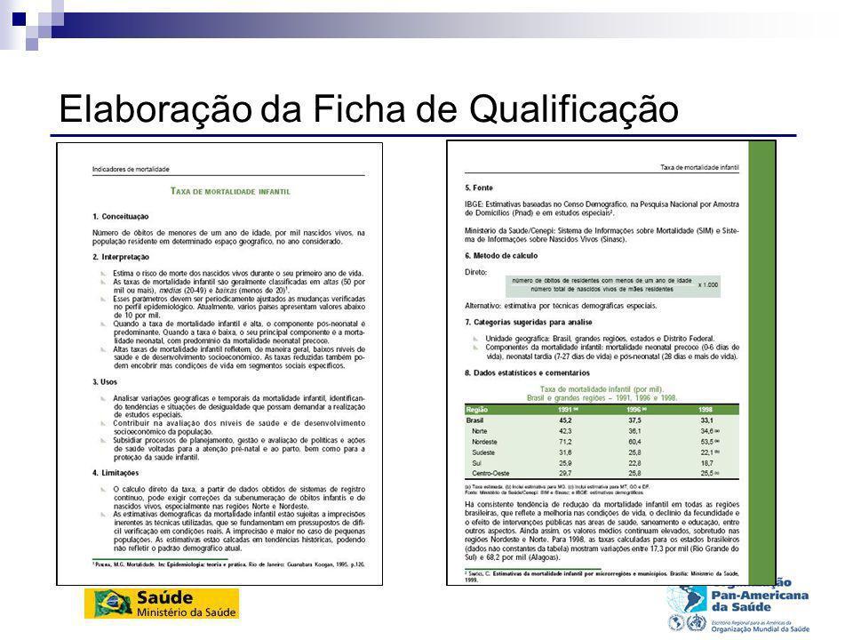 Conteúdo das fichas de qualificação Conceituação Interpretação Usos Limitações Fontes Método de cálculo Categorias sugeridas para análise Dados estatísticos e comentários