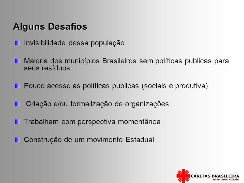Invisibilidade dessa população Maioria dos municípios Brasileiros sem políticas publicas para seus resíduos Pouco acesso as políticas publicas (sociai