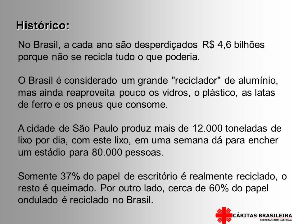No Brasil, a cada ano são desperdiçados R$ 4,6 bilhões porque não se recicla tudo o que poderia. O Brasil é considerado um grande