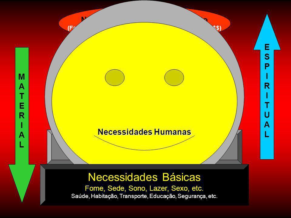 Necessidades de Manutenção (Das Necessidades Básicas) Necessidade de Aceitação Social (Pertencimento, sentir-se importante, ter Status, etc. ) Necessi