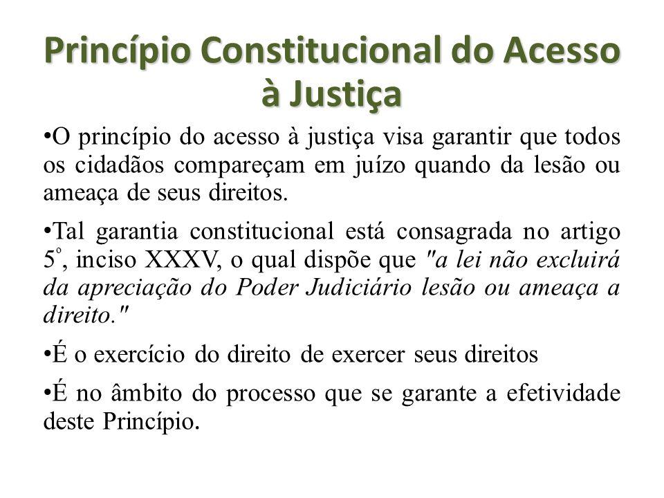 Princípio Constitucional do Acesso à Justiça O princípio do acesso à justiça visa garantir que todos os cidadãos compareçam em juízo quando da lesão o