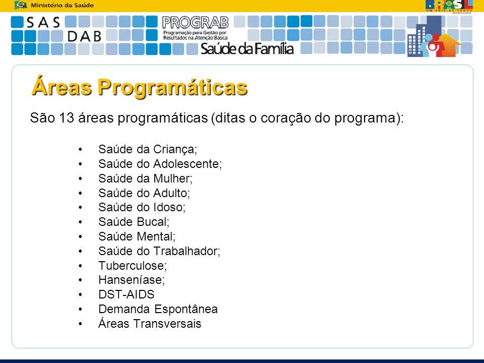 Áreas Programáticas São 13 áreas programáticas (ditas o coração do programa): Saúde da Criança; Saúde do Adolescente; Saúde da Mulher; Saúde do Adulto
