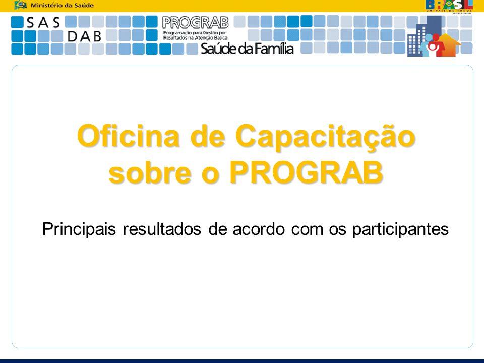 Oficina de Capacitação sobre o PROGRAB Principais resultados de acordo com os participantes