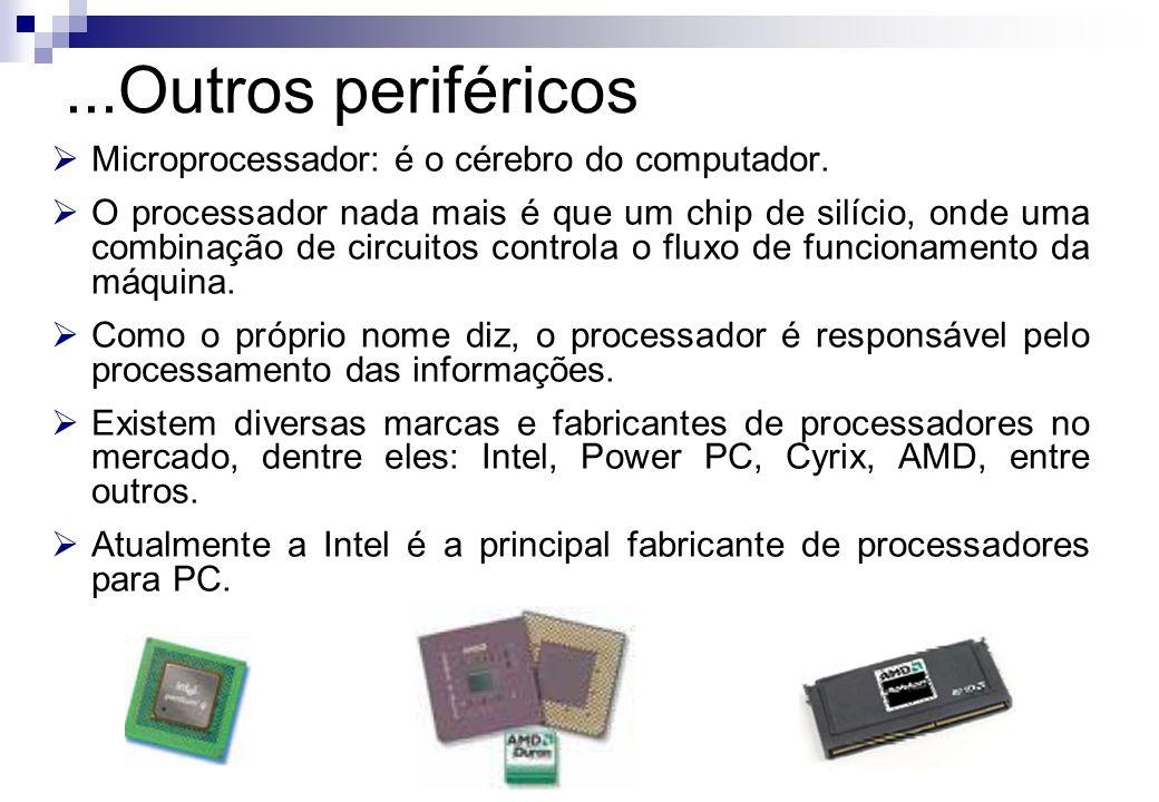Microprocessador: é o cérebro do computador. O processador nada mais é que um chip de silício, onde uma combinação de circuitos controla o fluxo de fu