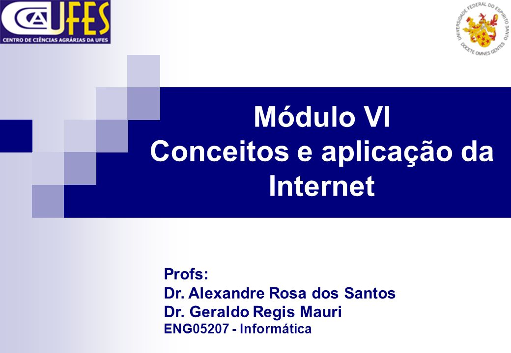 Módulo VI Conceitos e aplicação da Internet Profs: Dr. Alexandre Rosa dos Santos Dr. Geraldo Regis Mauri ENG05207 - Informática