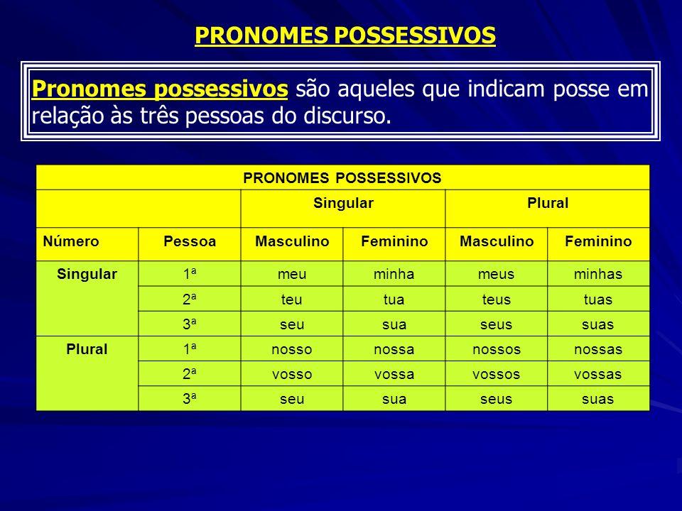 Pronomes possessivos são aqueles que indicam posse em relação às três pessoas do discurso. PRONOMES POSSESSIVOS SingularPlural NúmeroPessoaMasculinoFe