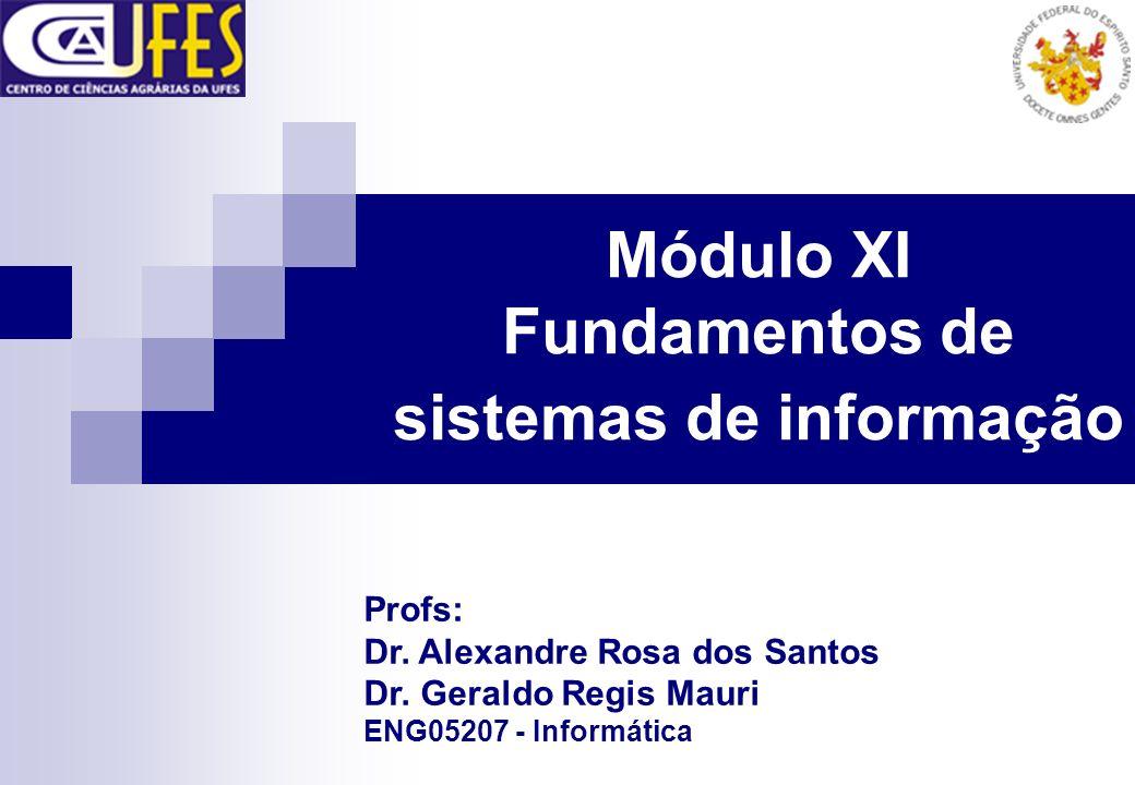 Módulo XI Fundamentos de sistemas de informação Profs: Dr. Alexandre Rosa dos Santos Dr. Geraldo Regis Mauri ENG05207 - Informática
