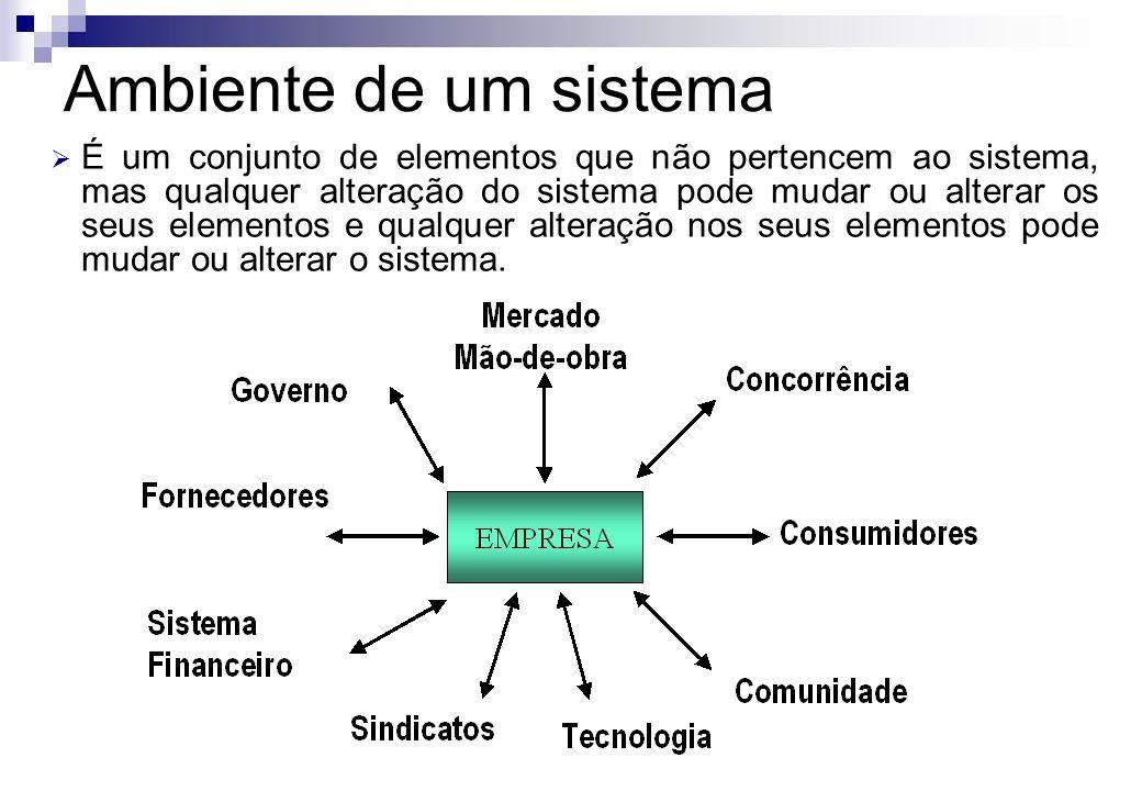 É um conjunto de elementos que não pertencem ao sistema, mas qualquer alteração do sistema pode mudar ou alterar os seus elementos e qualquer alteraçã