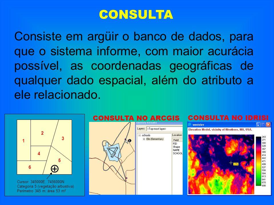 CONSULTA Consiste em argüir o banco de dados, para que o sistema informe, com maior acurácia possível, as coordenadas geográficas de qualquer dado esp