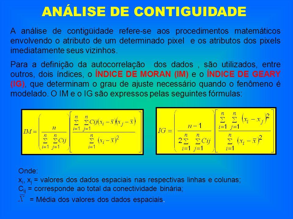 ANÁLISE DE CONTIGUIDADE A análise de contigüidade refere-se aos procedimentos matemáticos envolvendo o atributo de um determinado pixel e os atributos