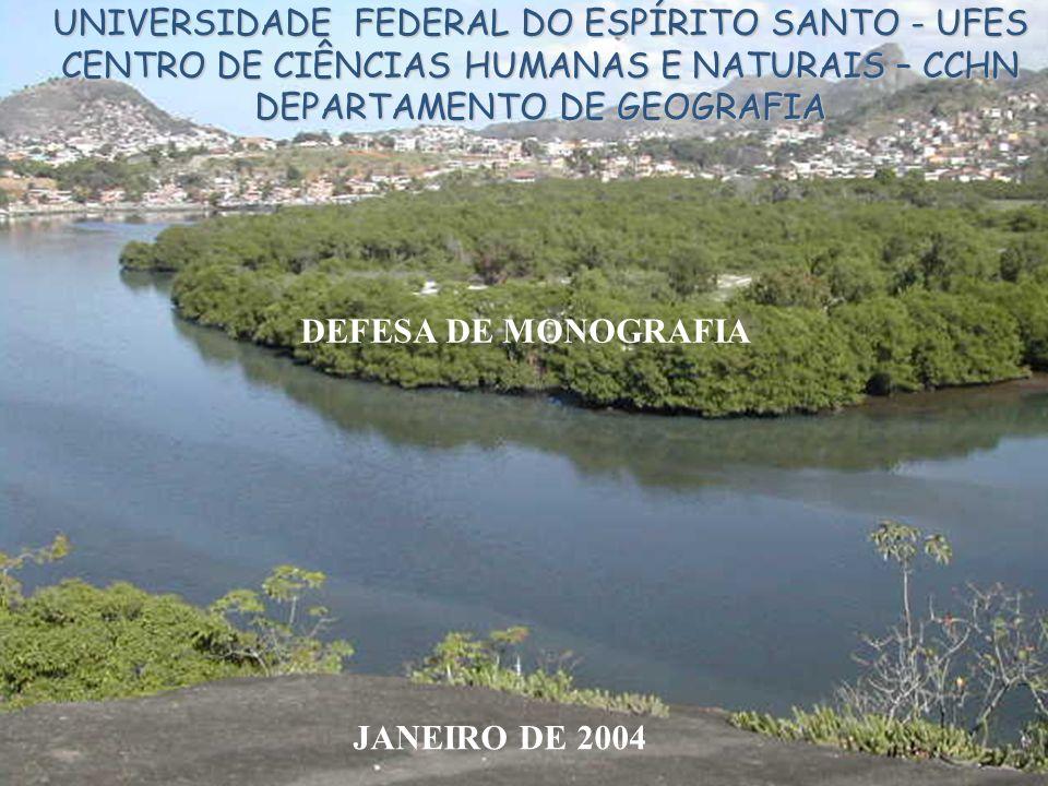 UNIVERSIDADE FEDERAL DO ESPÍRITO SANTO - UFES CENTRO DE CIÊNCIAS HUMANAS E NATURAIS – CCHN DEPARTAMENTO DE GEOGRAFIA DEFESA DE MONOGRAFIA JANEIRO DE 2004