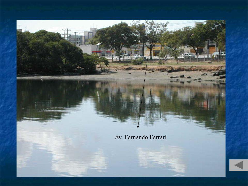 Av. Fernando Ferrari