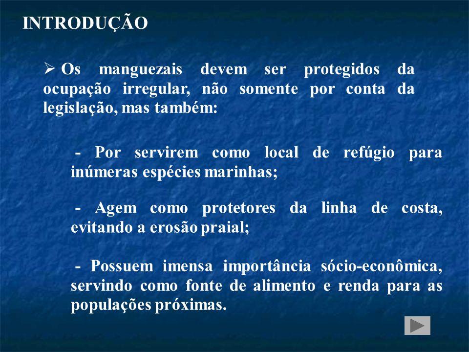 INTRODUÇÃO Os manguezais devem ser protegidos da ocupação irregular, não somente por conta da legislação, mas também: - Por servirem como local de refúgio para inúmeras espécies marinhas; - Agem como protetores da linha de costa, evitando a erosão praial; - Possuem imensa importância sócio-econômica, servindo como fonte de alimento e renda para as populações próximas.