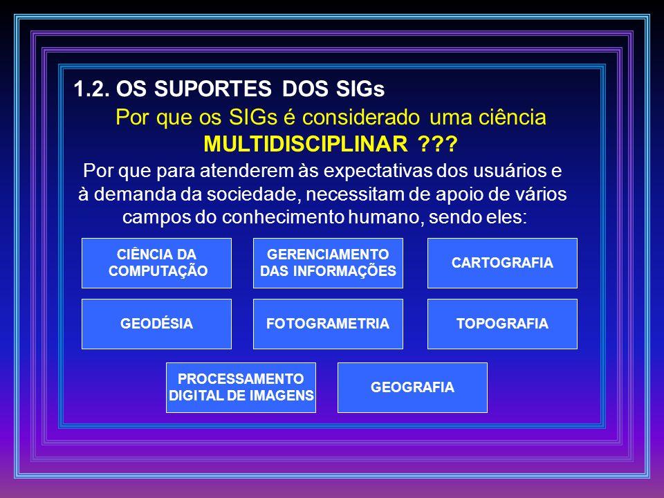 1.2. OS SUPORTES DOS SIGs Por que os SIGs é considerado uma ciência MULTIDISCIPLINAR ??? Por que para atenderem às expectativas dos usuários e à deman