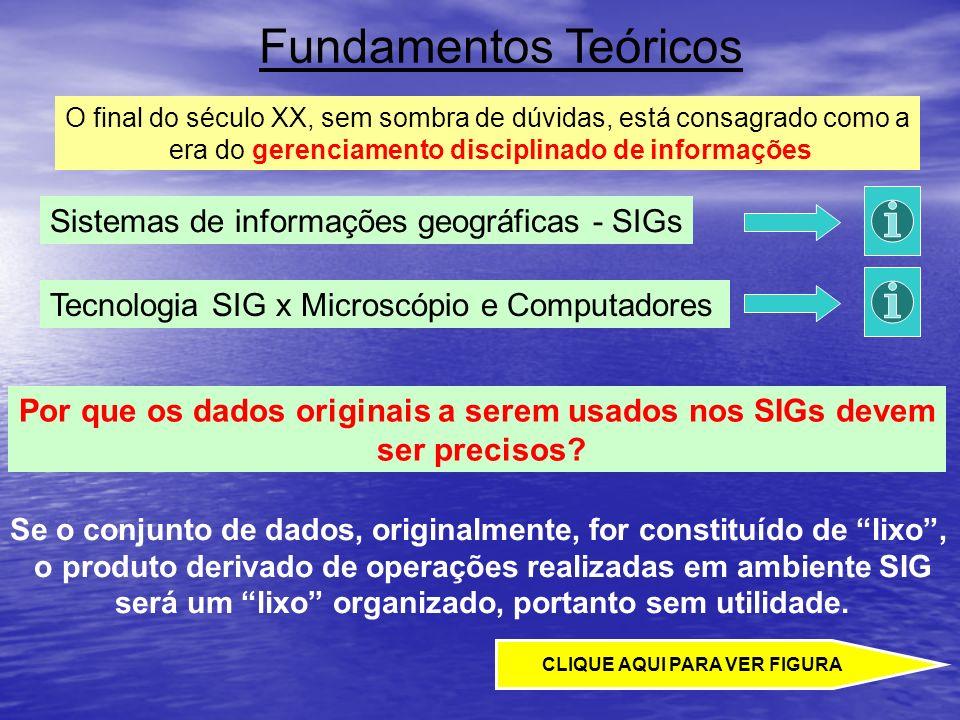 Fundamentos Teóricos O final do século XX, sem sombra de dúvidas, está consagrado como a era do gerenciamento disciplinado de informações Tecnologia S
