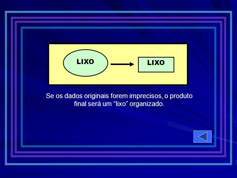 LIXO Se os dados originais forem imprecisos, o produto final será um lixo organizado.