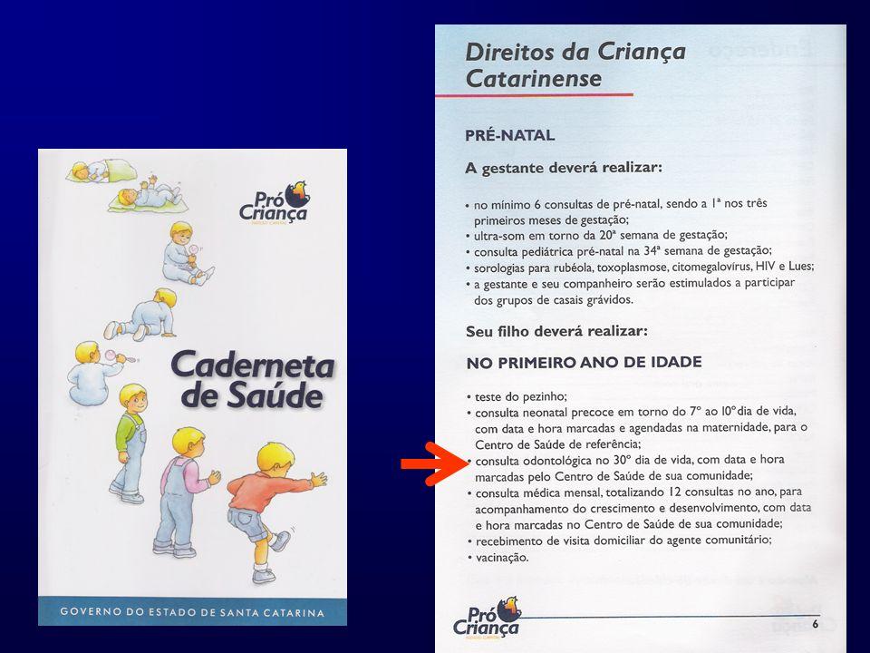 Atividades complementares Integração entre os participantes e equipes Palestras; Socialização de resultados Confraternização Fotos: Confraternização 2006