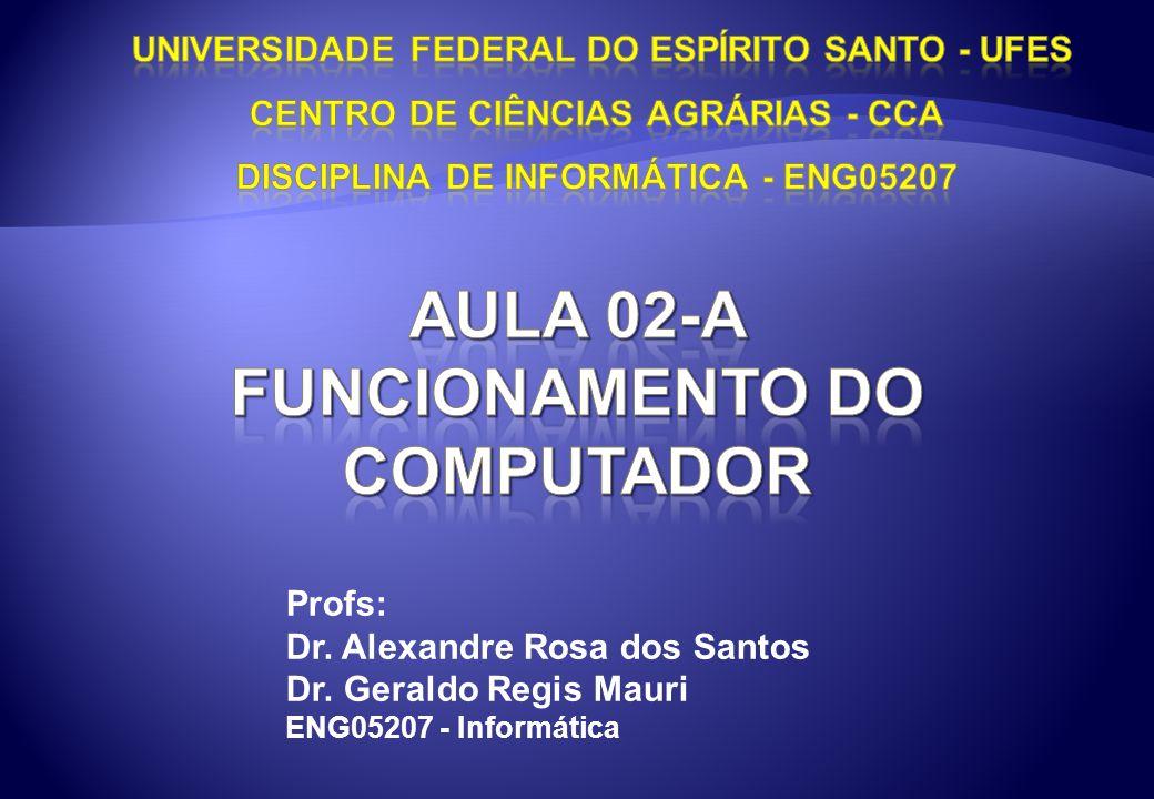 Profs: Dr. Alexandre Rosa dos Santos Dr. Geraldo Regis Mauri ENG05207 - Informática