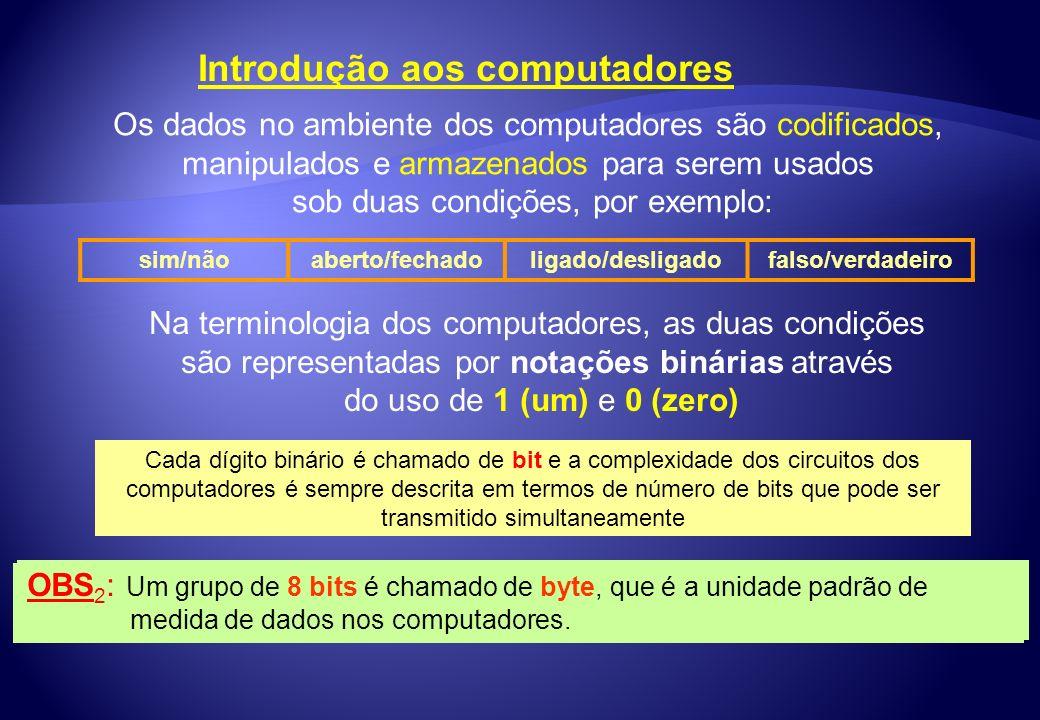 Introdução aos computadores Os dados no ambiente dos computadores são codificados, manipulados e armazenados para serem usados sob duas condições, por
