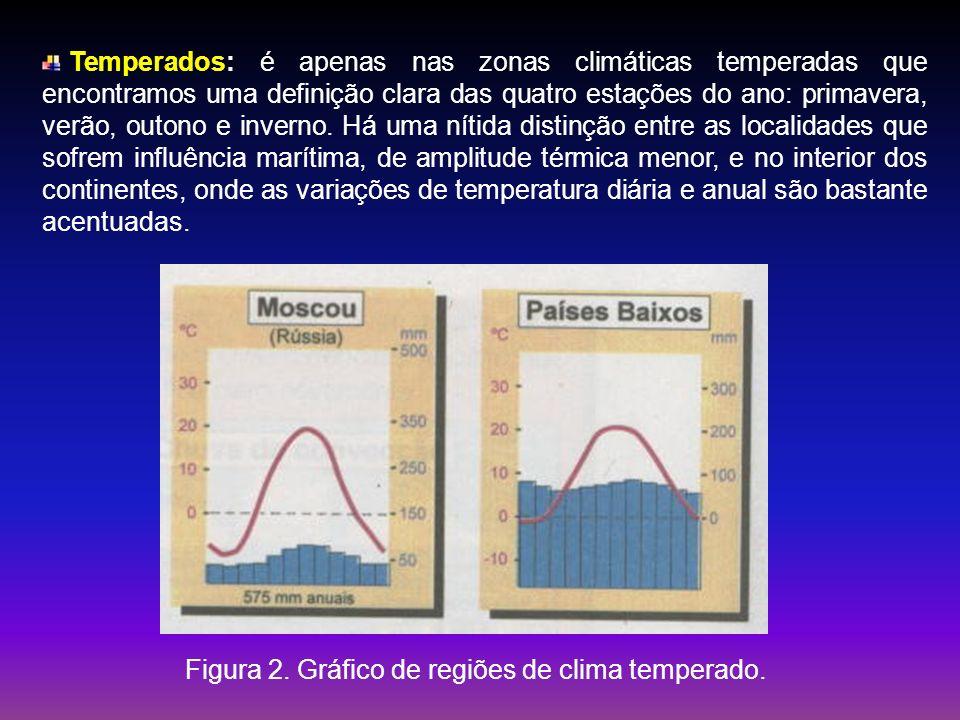 Temperados: é apenas nas zonas climáticas temperadas que encontramos uma definição clara das quatro estações do ano: primavera, verão, outono e invern