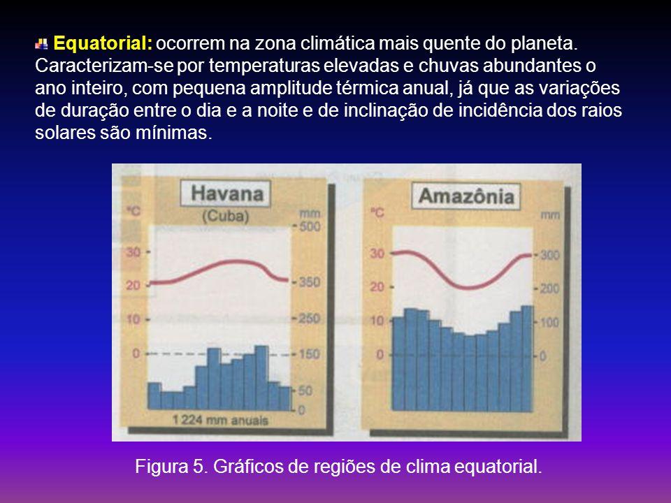 Equatorial: ocorrem na zona climática mais quente do planeta. Caracterizam-se por temperaturas elevadas e chuvas abundantes o ano inteiro, com pequena