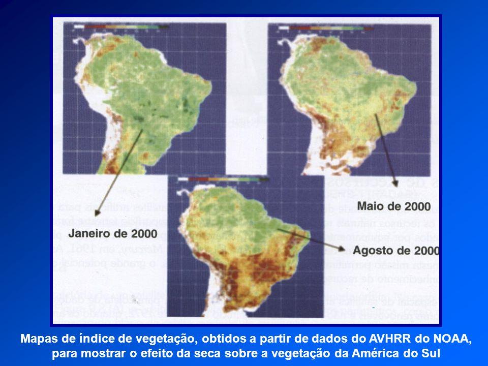 Mapas de índice de vegetação, obtidos a partir de dados do AVHRR do NOAA, para mostrar o efeito da seca sobre a vegetação da América do Sul